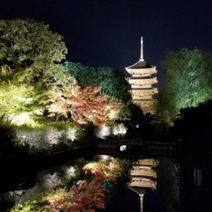 京都の秋の風物詩!